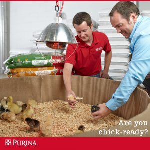 chick days at Crockett Farm & Fuel